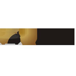 vip_logo_300x300